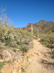Hiking Sonoran Preserve