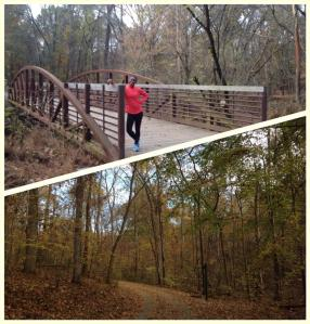 Mallard Creek Greenway