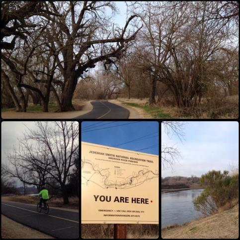 American River Bike Trail - Sacramento, CA