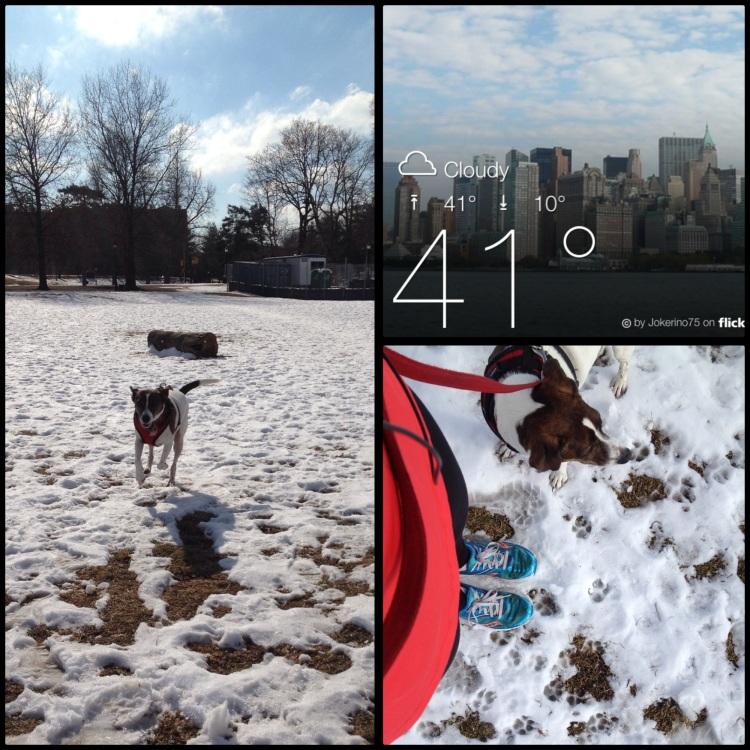 Winter run with Busu