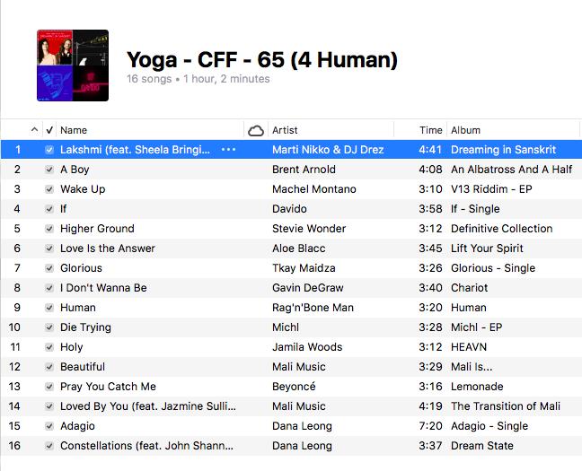 Yoga - 65 (4 Human)