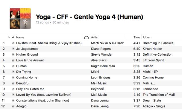 Yoga - Gentle Yoga (4 Human)
