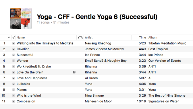 Yoga - Gentle Yoga (6 Successful)